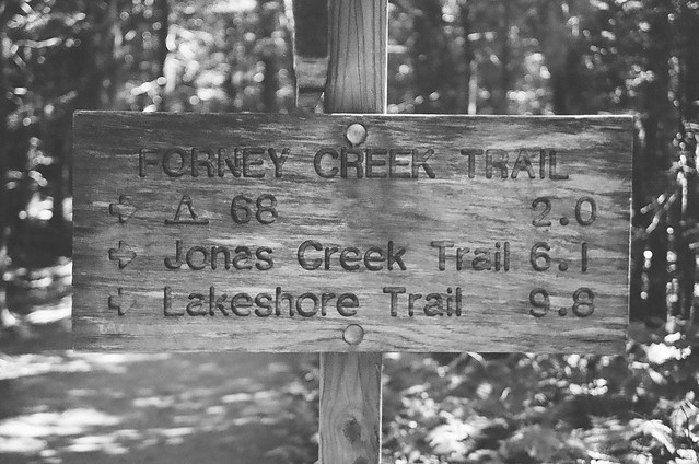 Forney Creek Trail is great.