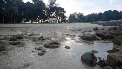 Sea turtle hatchery on Small Sisters Island