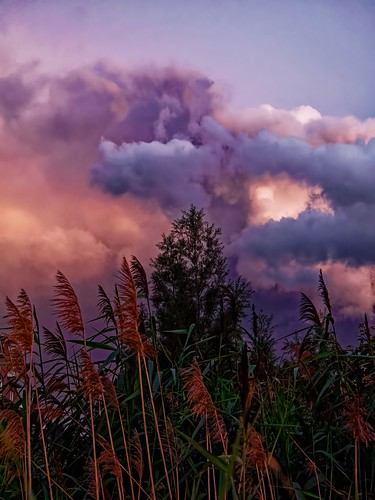 rainstorm sunset ontario canada