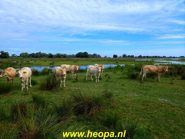 2020-08-19     Werkendam      24 Km  (33)