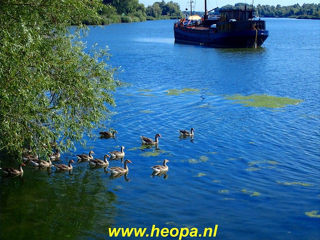 2020-08-19     Werkendam      24 Km  (22)