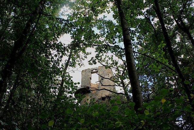 La Tour de Charbonnière
