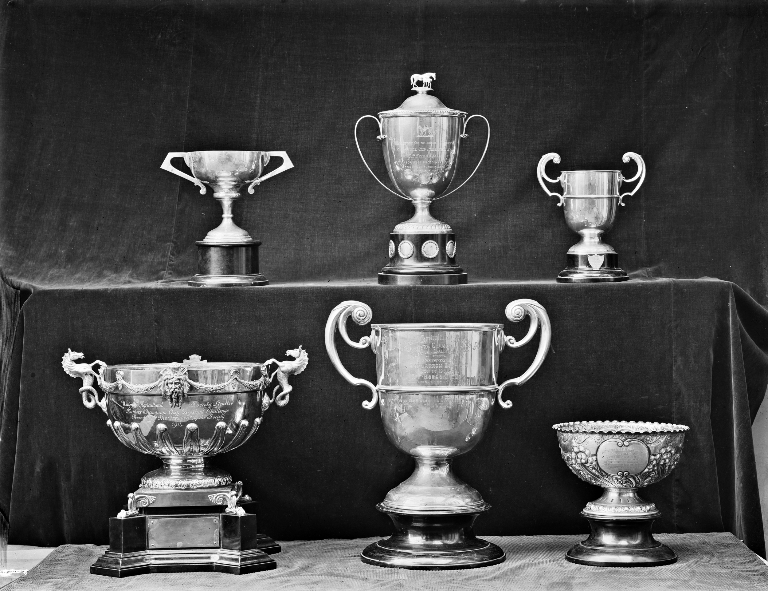 Trophies for the prettiest cows and horses in the show?