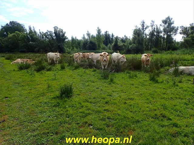 2020-08-19     Werkendam      24 Km  (32)