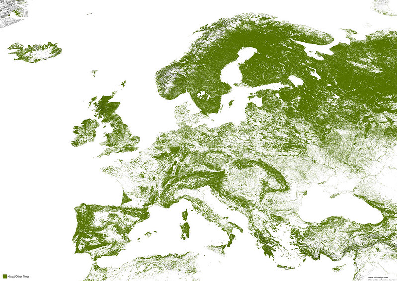 Map of mixed forests of Europe