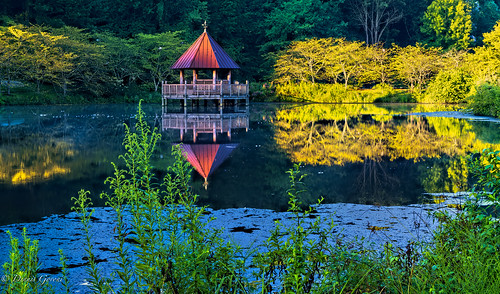 meadowlark virginia background cherrytrees gazebo lake lakecaroline landscape summer sunrise water