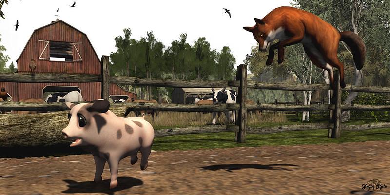 #253 - Run, Piggy, Run