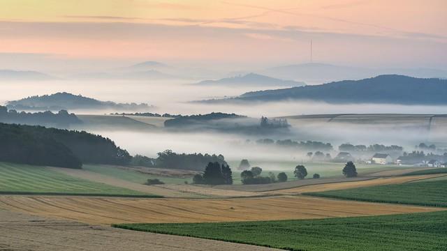 *Summer morning in the volcanic Eifel*