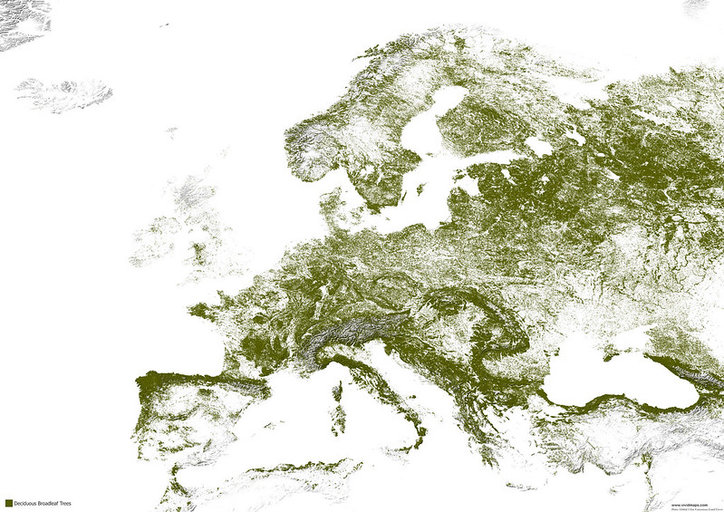 Map of deciduous broad-leaf forests of Europe