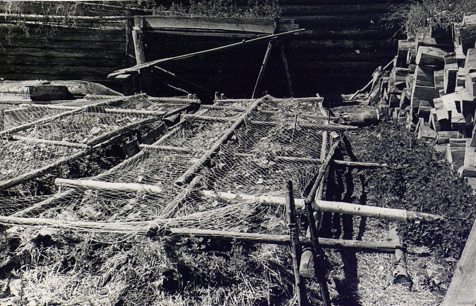 Огородные грядки, покрытые сетью