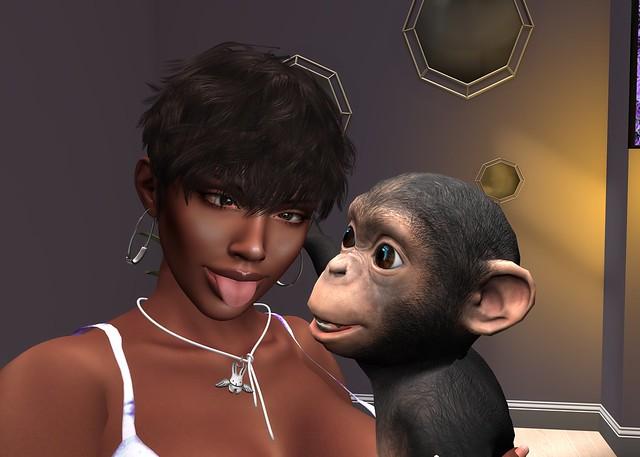 Primates & Puppies