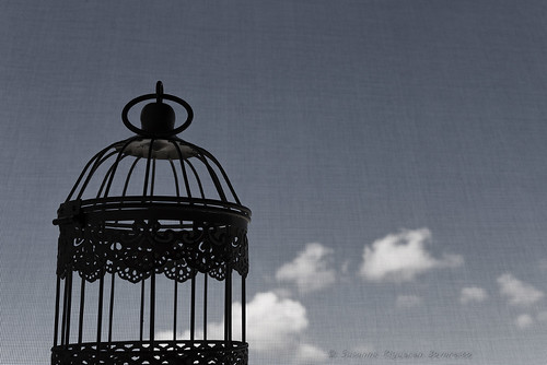 Cage and Clouds