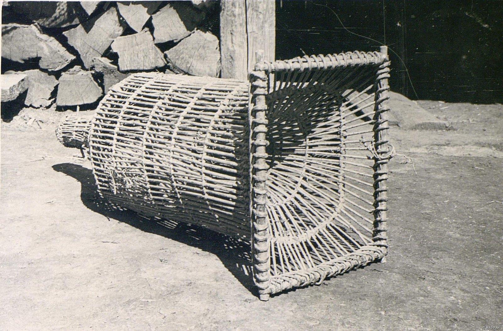 Плетеная из тальника «морда» для ловли рыбы