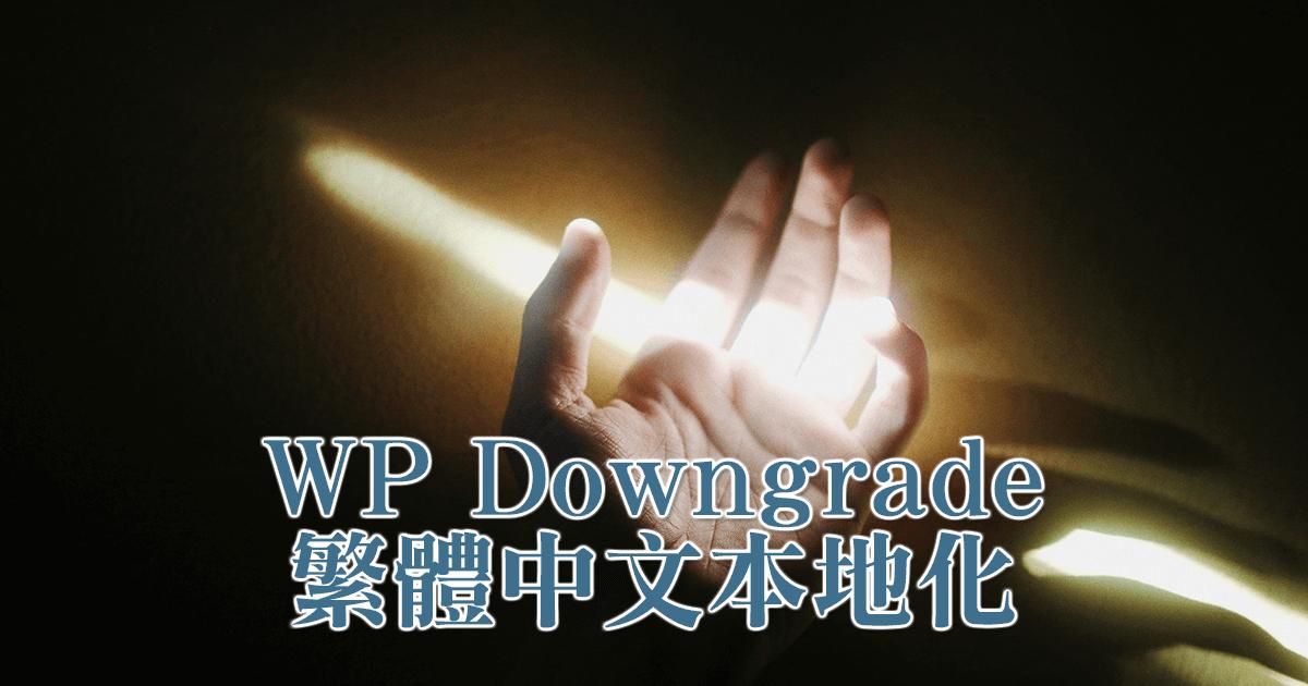 WP Downgrade 繁體中文本地化及使用方式