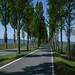 Radweg auf die Insel Reichenau