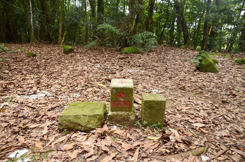 洗水山編號6630三等三角點及冠字次中(01)山字森林三角點 (1)