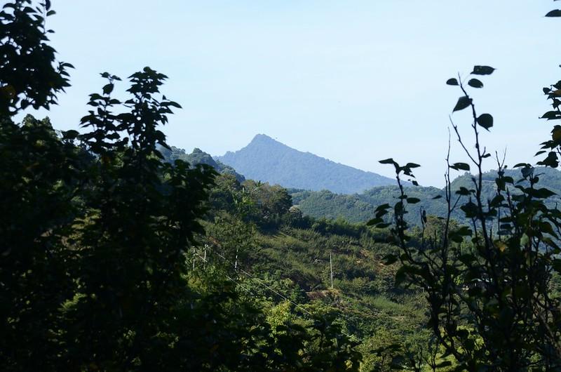 洗水山大樟樹登山口西南方遙望馬那邦山