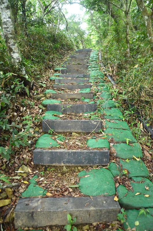 熊佧山登山路徑 (2)
