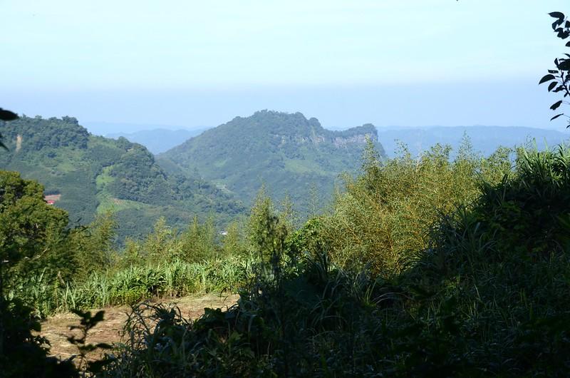 洗水山大樟樹登山口西邊俯瞰鷂婆山