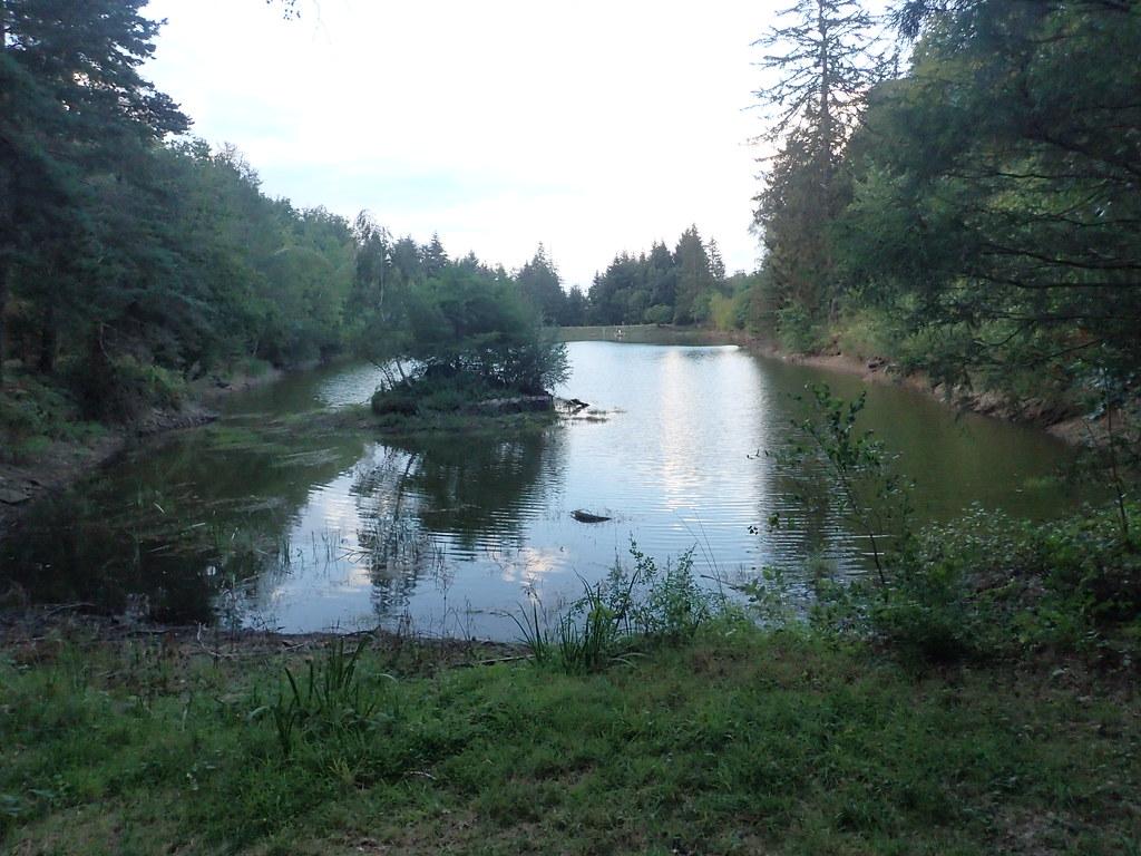 Aux étangs