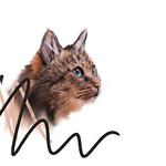 Cat Art Portrait