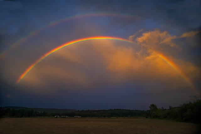 A Summer Back Pasture Rainbow