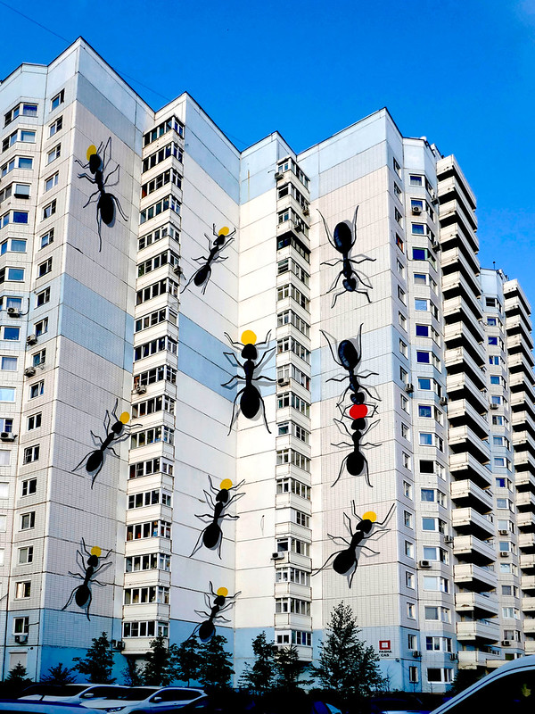 attack of huge ants