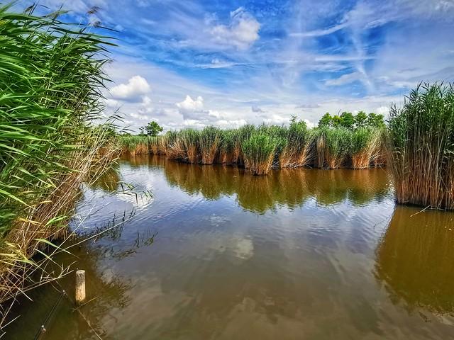 FISHING LAKE (2)
