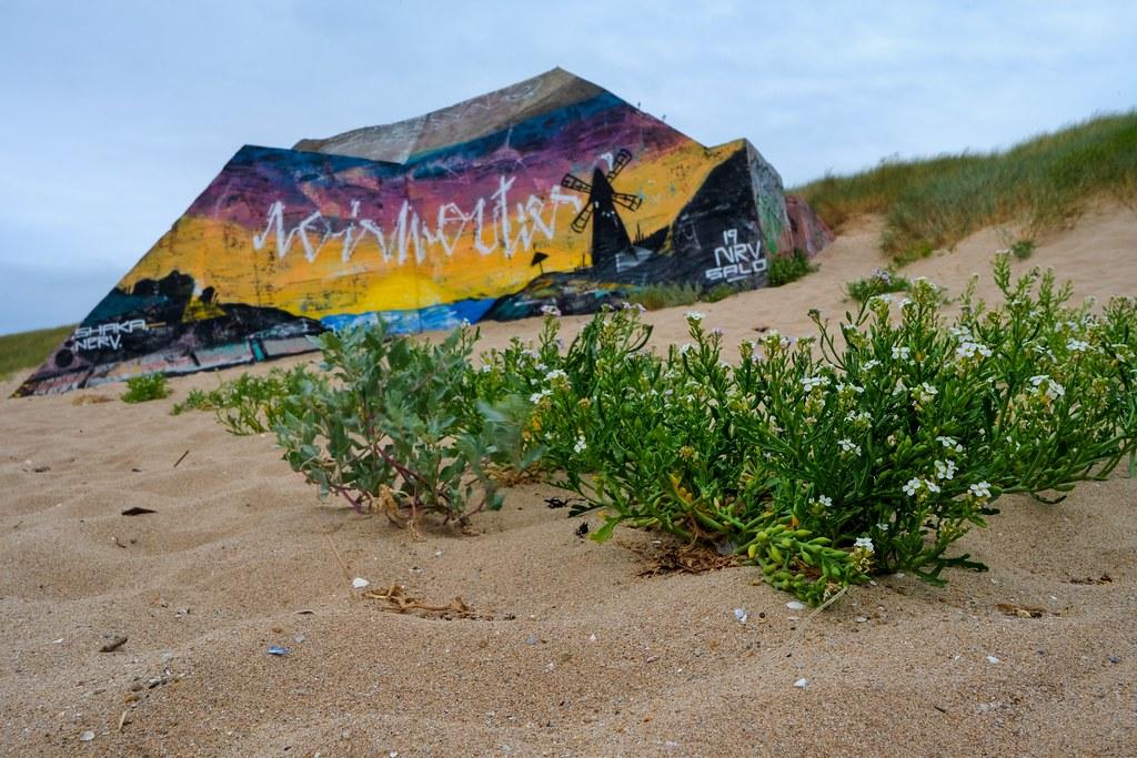 Un autre blaukhaus côté Atlantique sur l'île de Noirmoutier