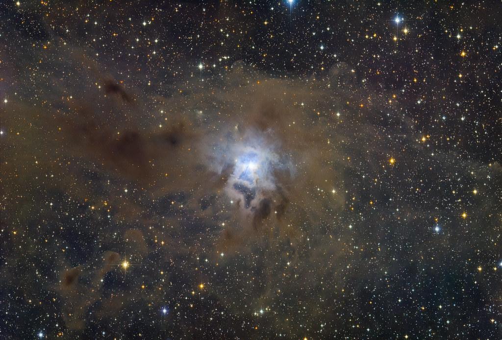 Iris Nebula (Caldwell 4)