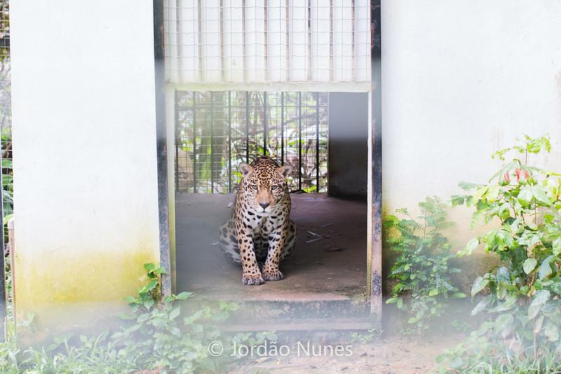 Portal Marabá - Parque Zoobotânico de Marabá