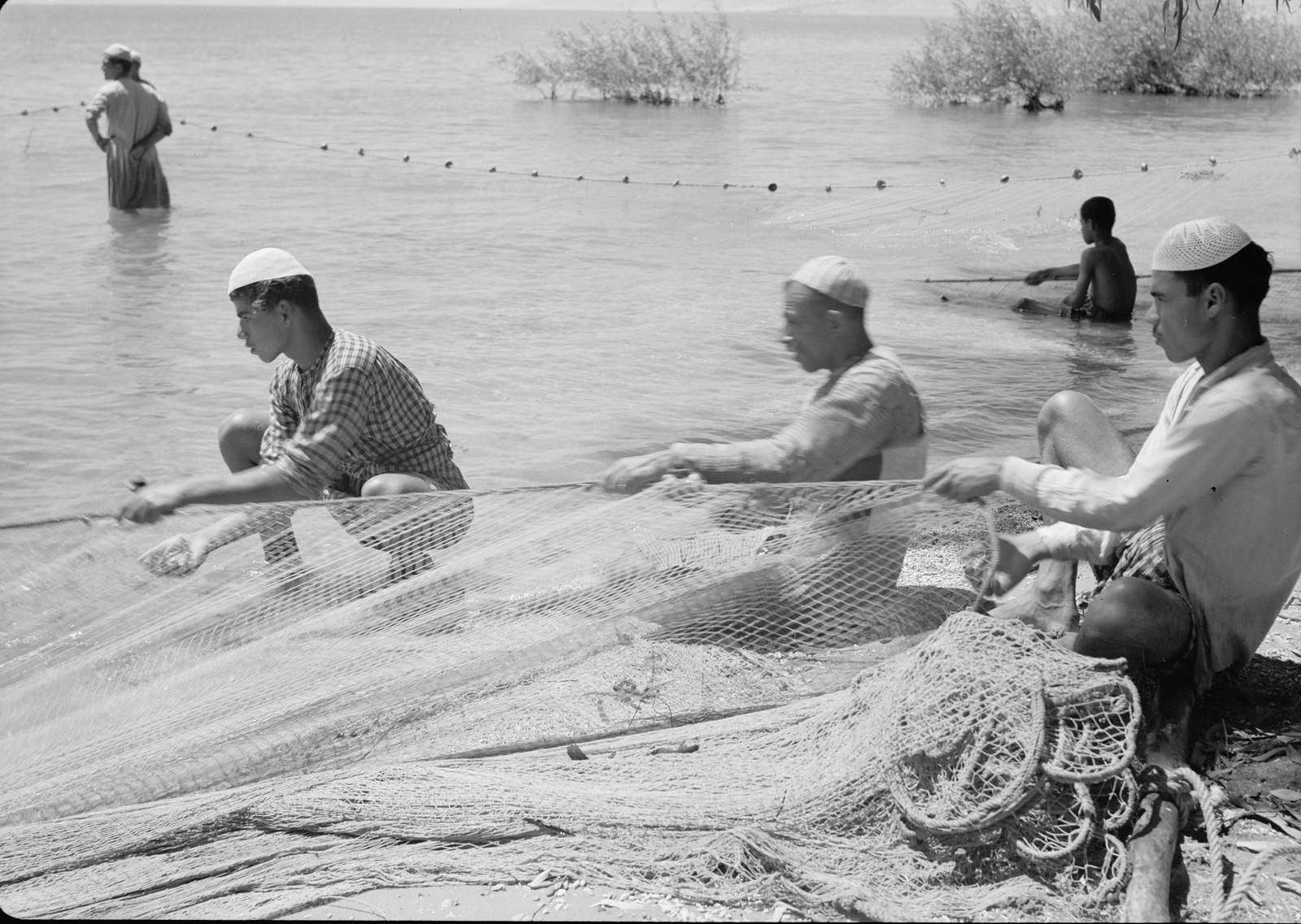 10. Рыбаки на берегу вытягивают сети