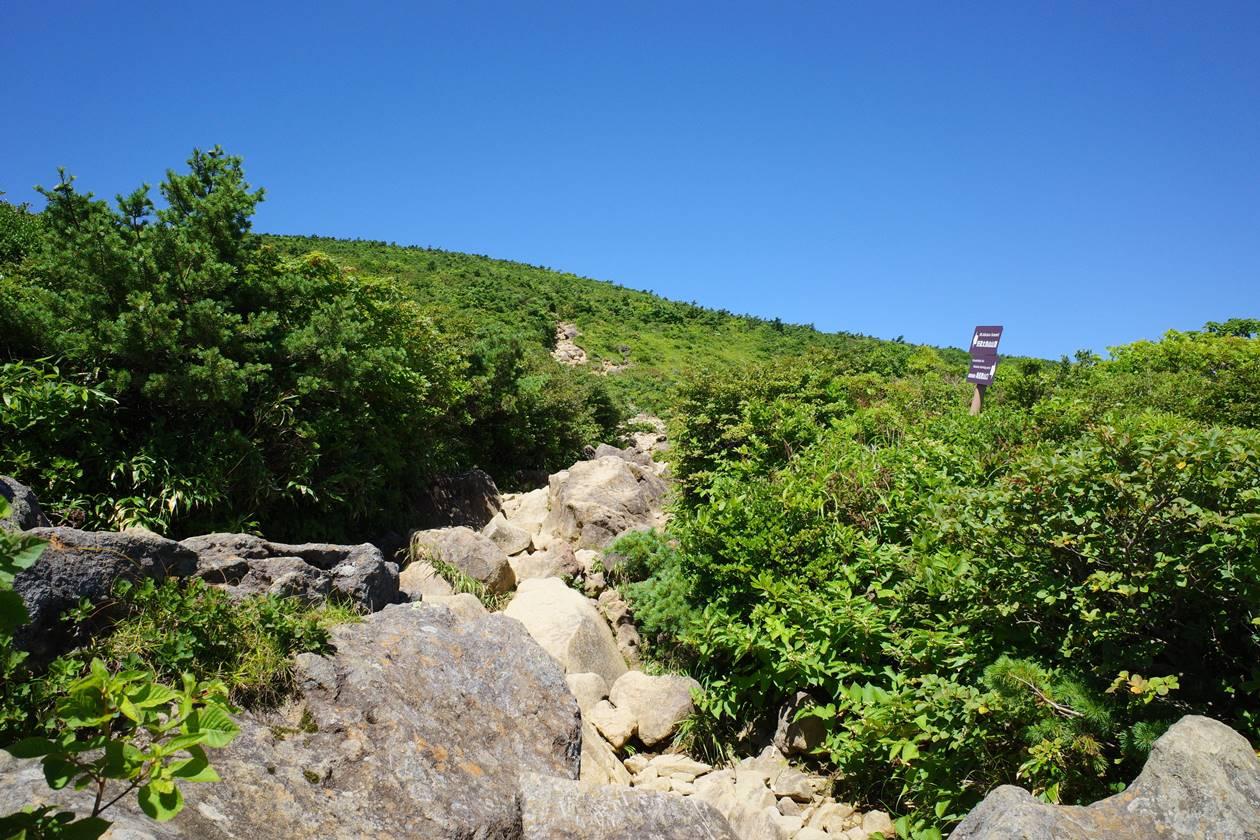 安達太良山 奥岳ルート登山道