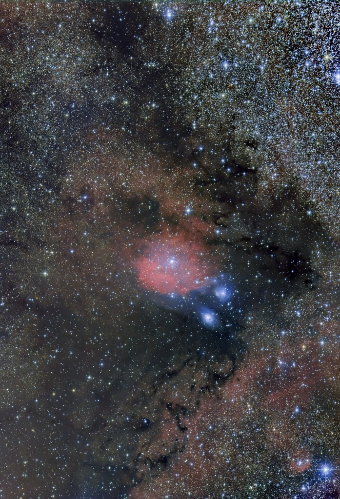 NGC6589