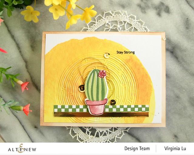 08292020-Mini Delight Cactus-CheckerBoard-RoundMaze Die (2)