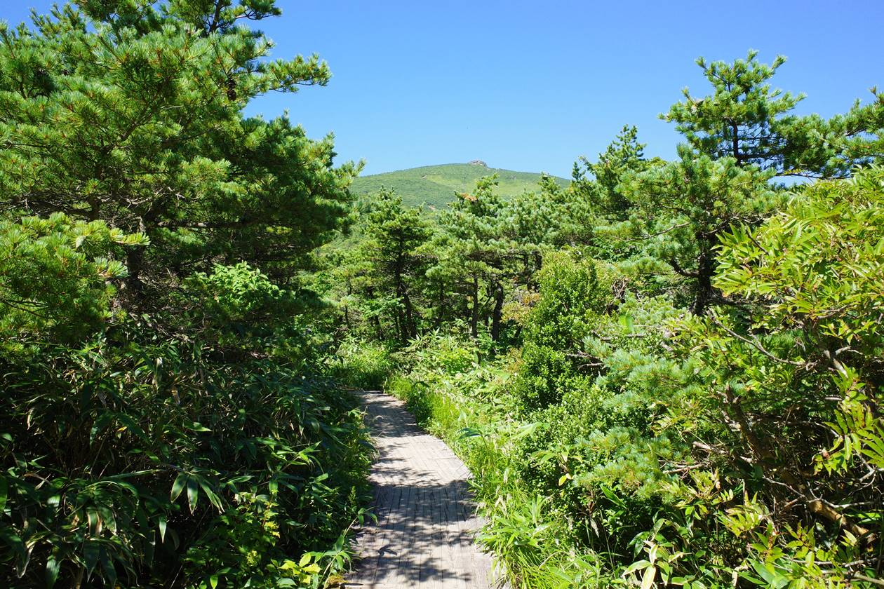 安達太良山登山 薬師岳からの木道路