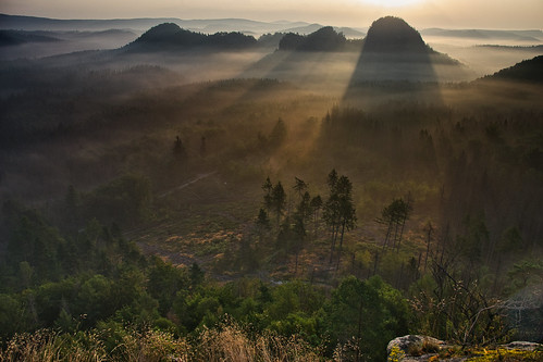 hill hillside morning early fog shadow sunlight landscape outdoor august summer view panorama saxonswitzerland sächsischeschweiz winterstein hinteresraubschloss grosserzschand elbsandsteingebirge saxony sachsen germany deutschland nikond3100 tree forest road