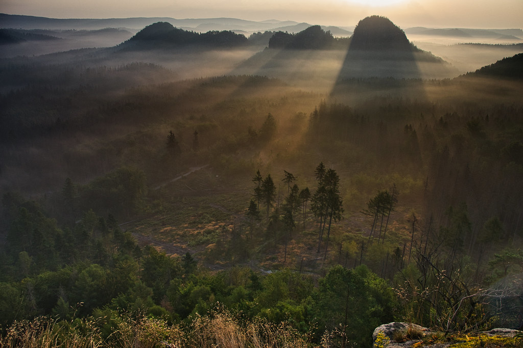 Early morning sunlight and fog in Saxon Switzerland - explored! Thanks!