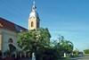 Sophora Bäume vor der Billeder Kirche