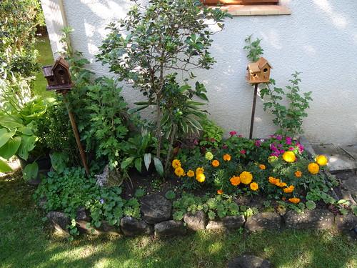 Jardines en zona de montaña