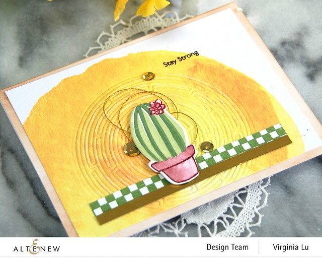 08292020-Mini Delight Cactus-CheckerBoard-We StandWith You Stamp Set-RoundMaze Die (2)