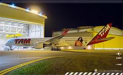 LATAM Airbus A350 XWB Livery concept
