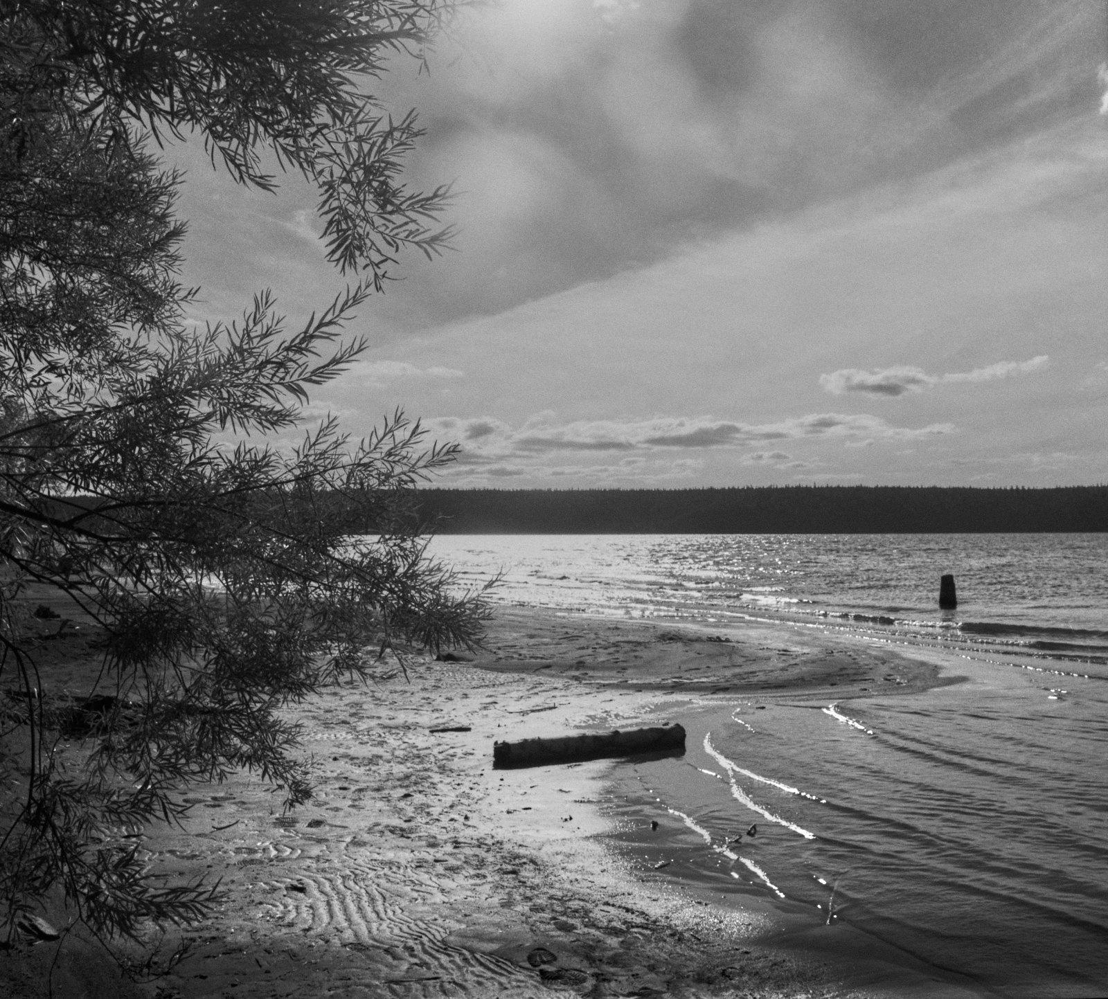1998 river Sylva