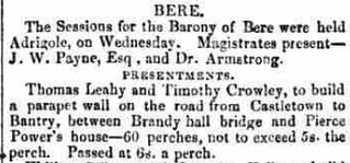 Skibbereen & West Carbery Eagle; or, South Western Advertiser - Saturday 20 January 1866