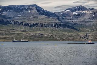 Huginn kominn á laxveiðar