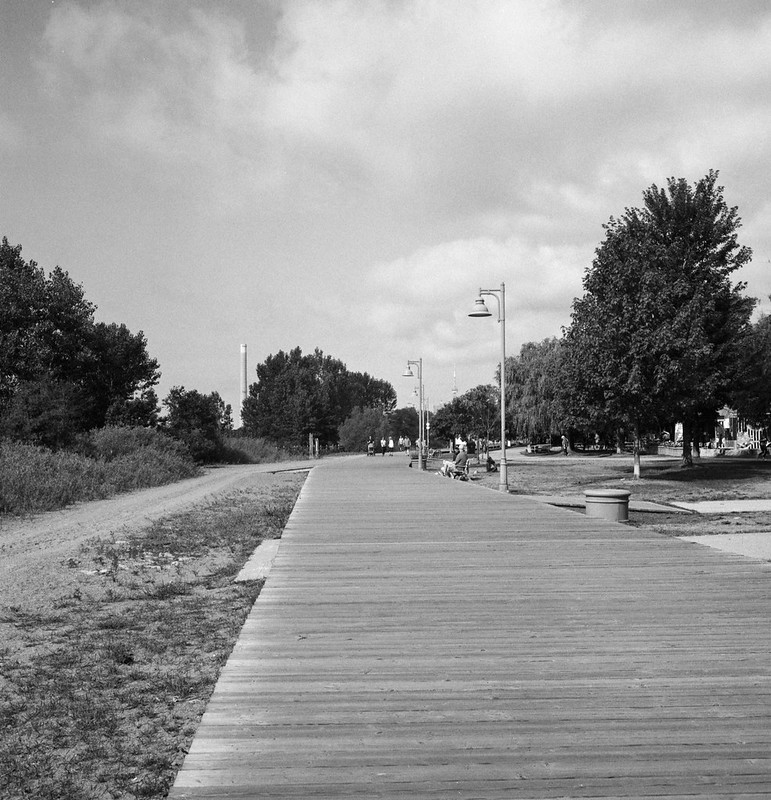 Boardwalk by the Dog Park August 2020