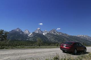 Road Trip Through Yellowstone