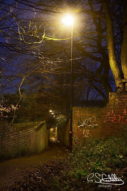 Dandy's Walk, Walsall 25/01/2020