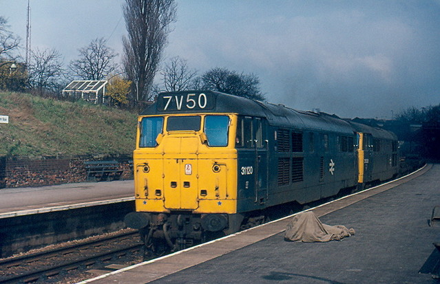 Class 31s by Andy Sutton