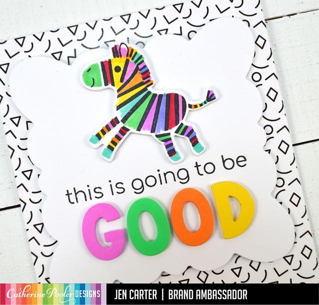 Jen Carter Rainbow Zebra This is Going to Be Good Closeup